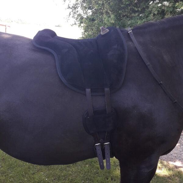 Brockamp Ridepad på stor sort hest